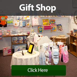 Gift shop items displayed including card games and stuffed toys