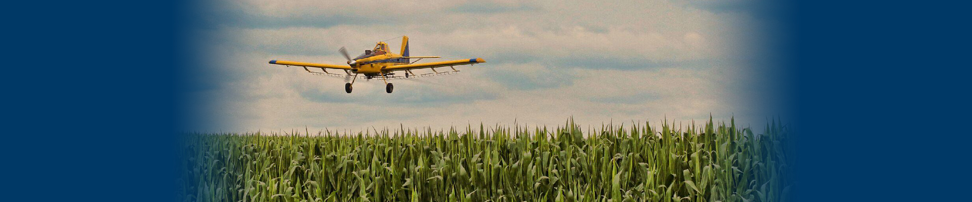 A airplane going over a corn field