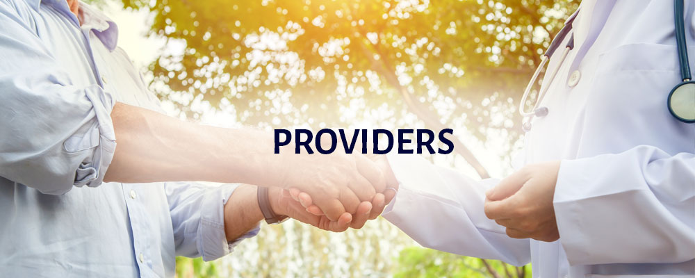 Providers: a pair of hands is shaking and greeting another pair of hands