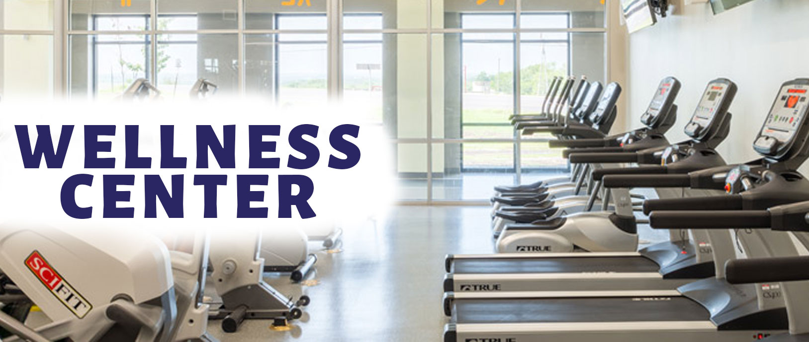Picture of our wellness Center